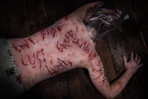 2015 Serial Killers Sins